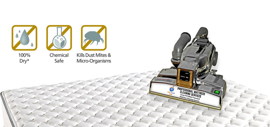 Anti Dust Mite Mattress Cleaning Services